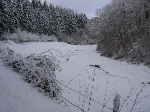 Lambach im Winter