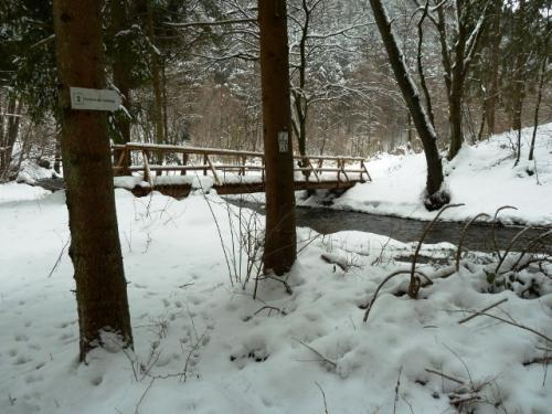 Brücke bei der Berenswiese